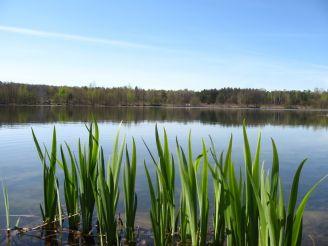 Blue Lake, Stryhany