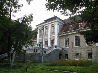 Палац Кшечуновичів, Більшівці