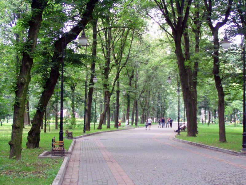 "Результат пошуку зображень за запитом ""Франківськ парк"""