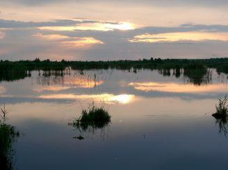 """Landscape reserve """"Zamglai"""""""