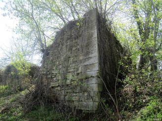 Чернелицький замок, Чернелиця