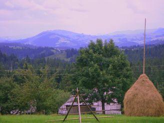 Кривопольский перевал, Кривополье