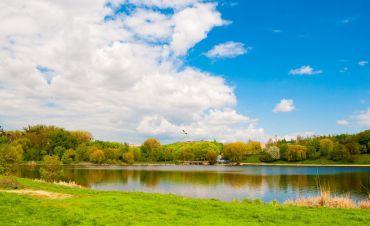 Озеро Басів Кут, Рівне