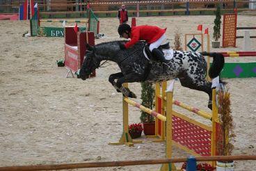 """Equestrian club """"Bukovina Troy"""""""