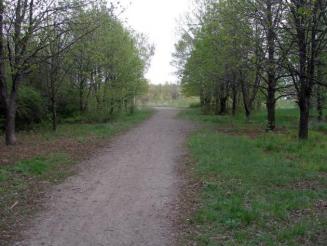 Луганский дендропарк