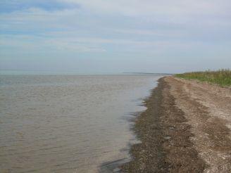 Yagorlytska ornithological reserve (Yagorlytska Bay)
