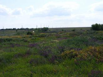 Settlement Yeni-Dunya