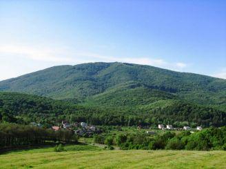Заказник «Черная Гора», Виноградов