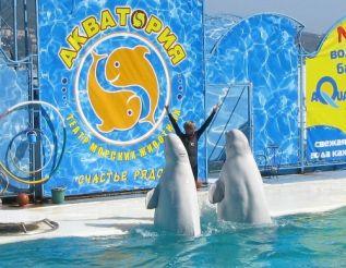 Театр морских животных «Акватория»