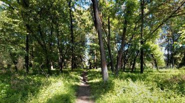 Боздошский парк, Ужгород