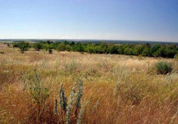 Регіональний ландшафтний парк «Донецький кряж»