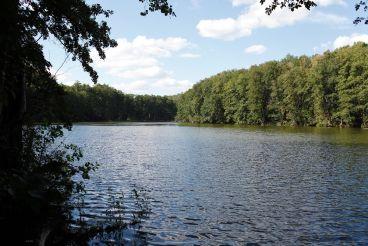 Озеро Шелеховское, Межирич