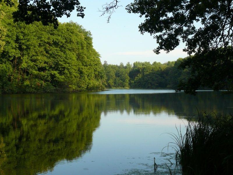 Картинки по запросу Шелехівське озеро