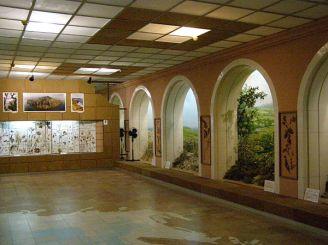 Музей старожитностей, Феодосія