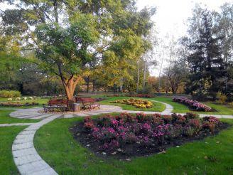 Ботанический сад, Кривой Рог