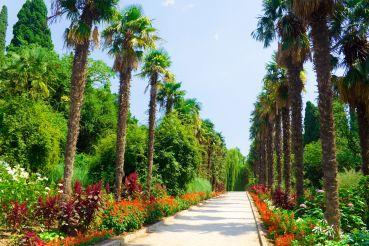 Никитский ботанический сад, Никита