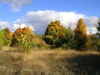 Национальный природный парк «Большой Луг»