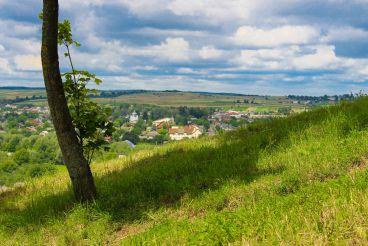 Вид на Галич с Замковой горы