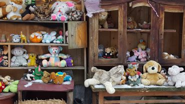 The Yard of Lost Toys