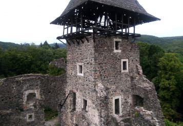 Невицкий замок, Невицкое