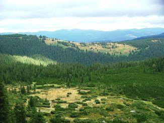 Карпатский национальный природный парк