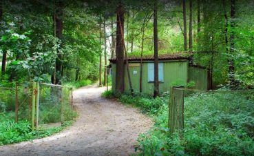 База відпочинку Лісовий берег, Житомир
