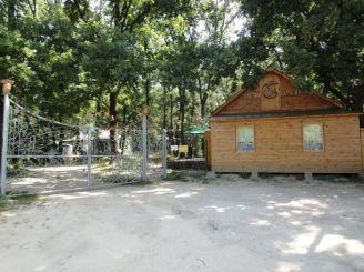 База відпочинку Золотий Карасик, Виграїв