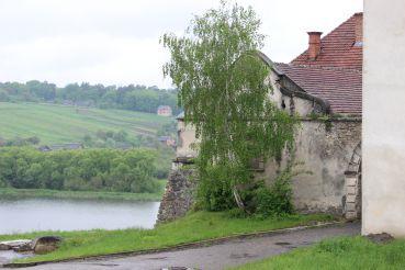 Свірзький замок, Свірж