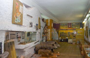 Краєзнавчий музей, Кривий Ріг