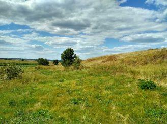 Bielsk settlement