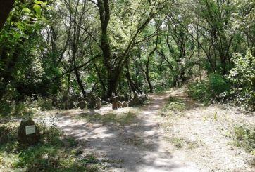 Каменное святилище, Хортица