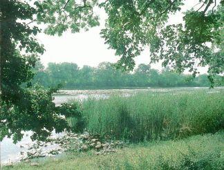 Полонський парк, Полонне