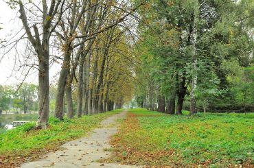 Парк, Млинів