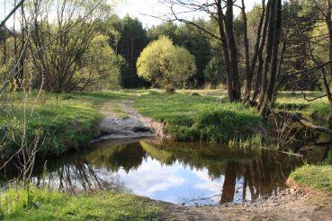Landscape Park Malevanka