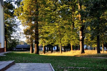 Парк, Клевань