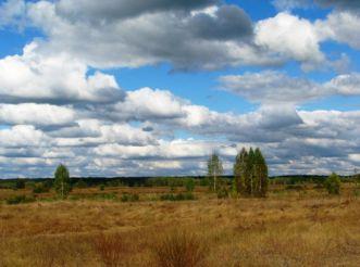 Mizhrichynskyi Regional Landscape Park