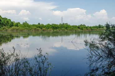 Нудистський пляж на Магістратському озері, Чернігів
