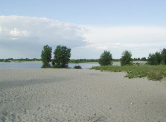 Nudist beach at Mitnica, Cherkassy