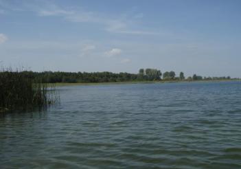 Озеро Сомин (Соминское озеро), Сомин