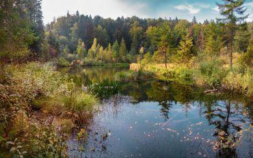 Lake Dead (Crane), Kamenka