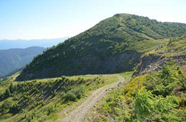 Гора Мика-Маре (Нэнеска)