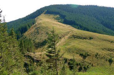 Гора Кострич