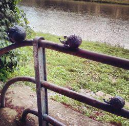 Скульптура Иглавские ежи, Ужгород