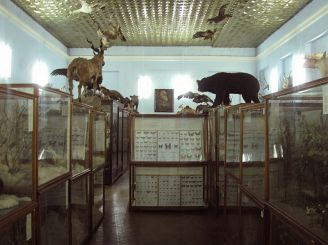 The Zoological Museum of DNU named after O. Gonchar