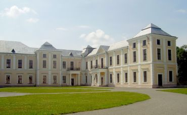 Vyshnevetsky Palace