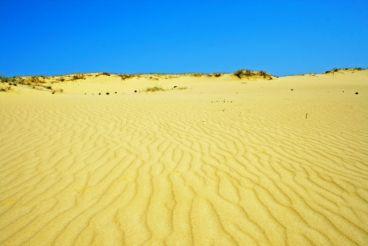 Олешківські піски, Раденськ