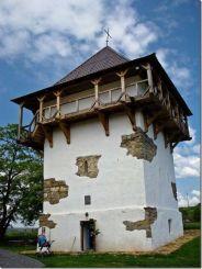 Бушанський замок, Буша