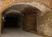 Древние подземелья в центре Дрогобыча откроют для туристов