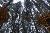 На Закарпатье обустроили экстремальную экотропу под кронами деревьев