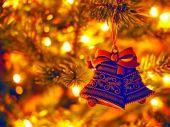Главная елка Украины 2014/2015 скоро зажжет свои огни